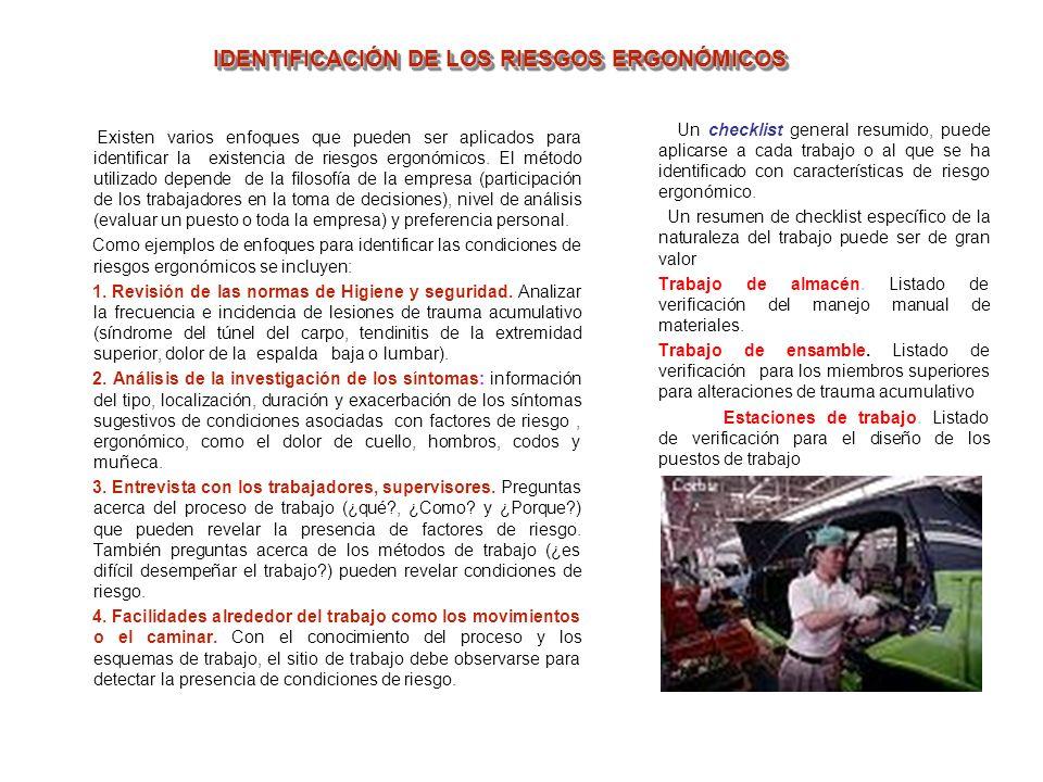 IDENTIFICACIÓN DE LOS RIESGOS ERGONÓMICOS