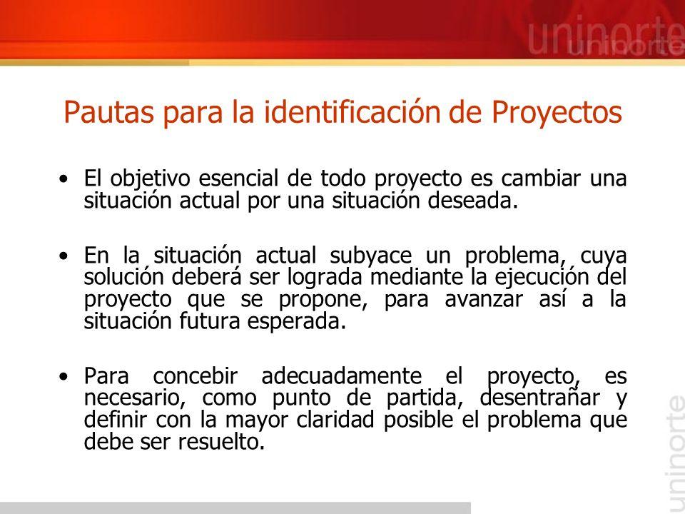 Pautas para la identificación de Proyectos