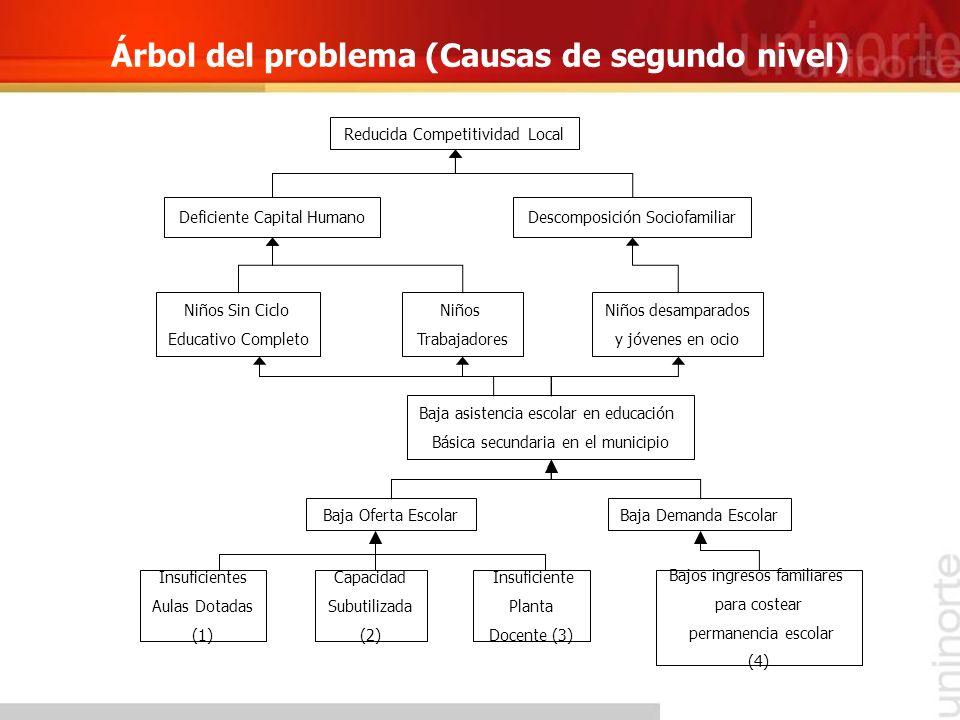 Árbol del problema (Causas de segundo nivel)