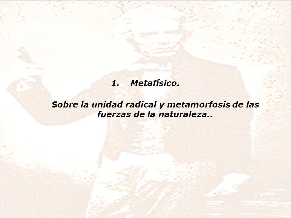 Metafísico. Sobre la unidad radical y metamorfosis de las fuerzas de la naturaleza..