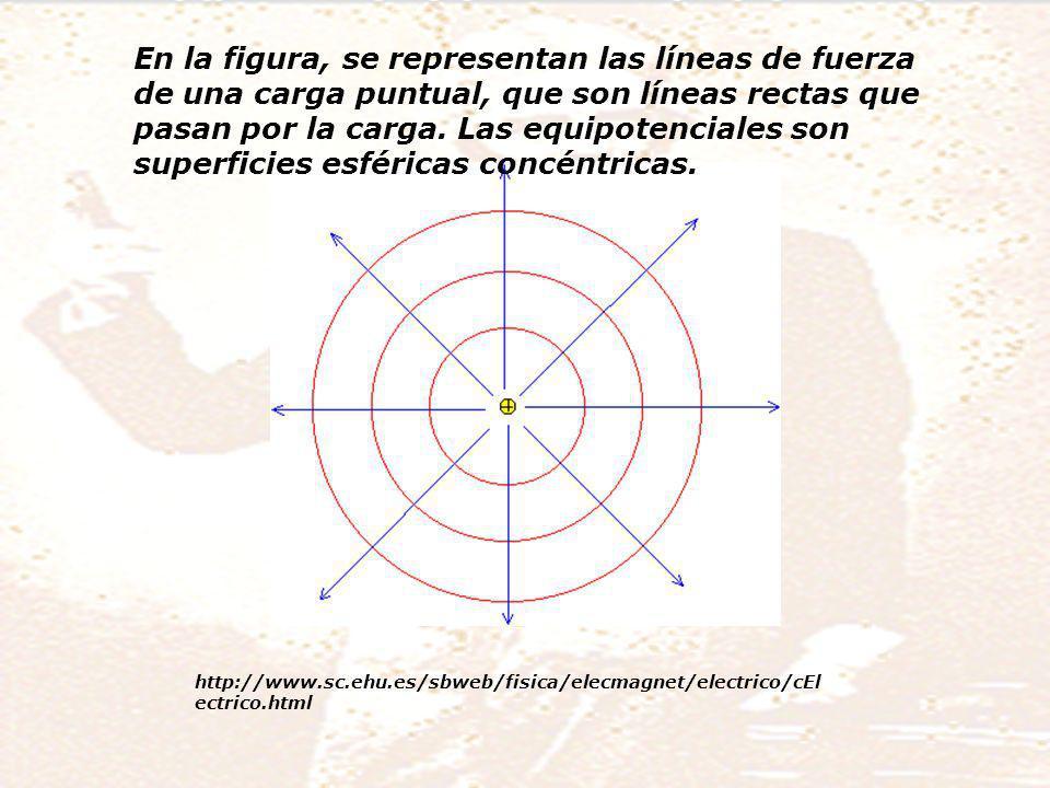 En la figura, se representan las líneas de fuerza de una carga puntual, que son líneas rectas que pasan por la carga. Las equipotenciales son superficies esféricas concéntricas.