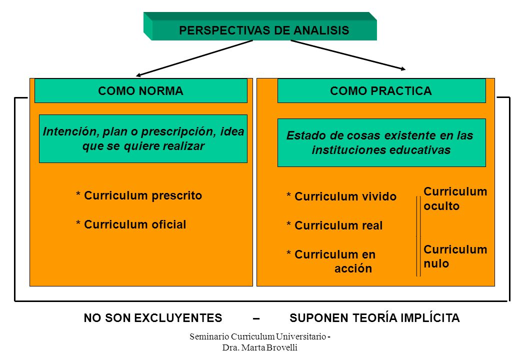 PERSPECTIVAS DE ANALISIS
