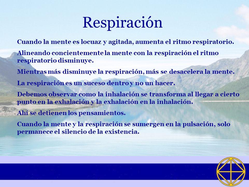 Respiración Cuando la mente es locuaz y agitada, aumenta el ritmo respiratorio.