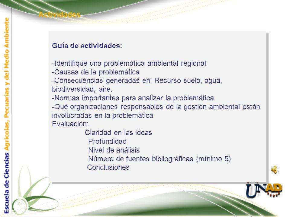 Actividades Guía de actividades: