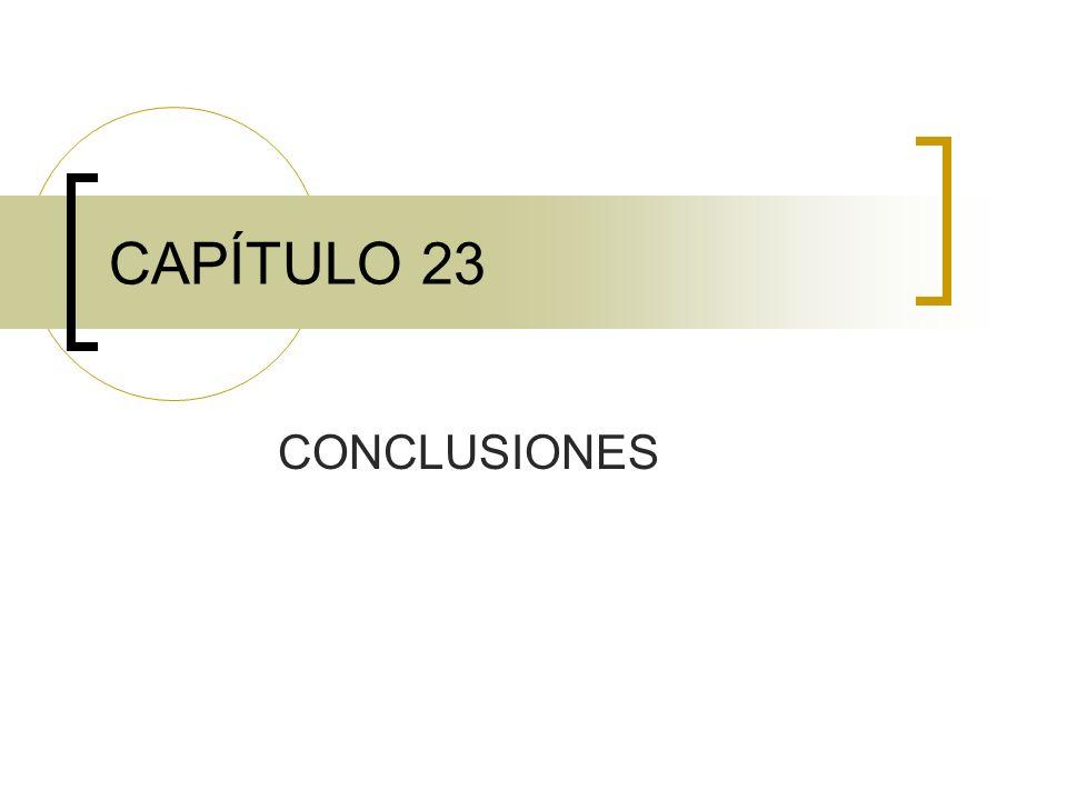 CAPÍTULO 23 CONCLUSIONES