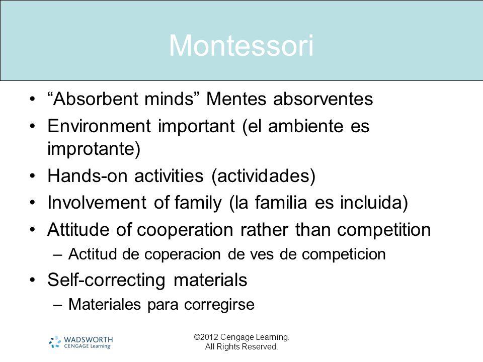 Montessori Absorbent minds Mentes absorventes