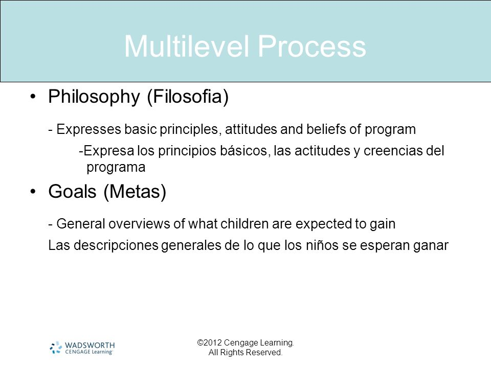 Multilevel Process Philosophy (Filosofia) - Expresses basic principles, attitudes and beliefs of program.