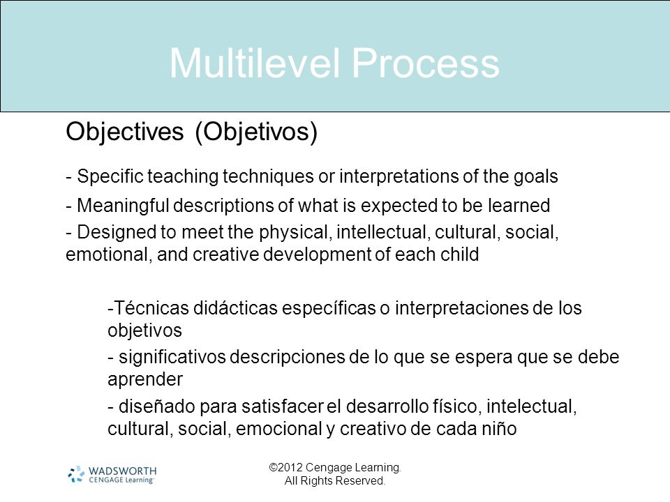 Multilevel Process Objectives (Objetivos) - Specific teaching techniques or interpretations of the goals.