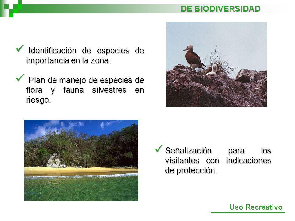 Identificación de especies de importancia en la zona.