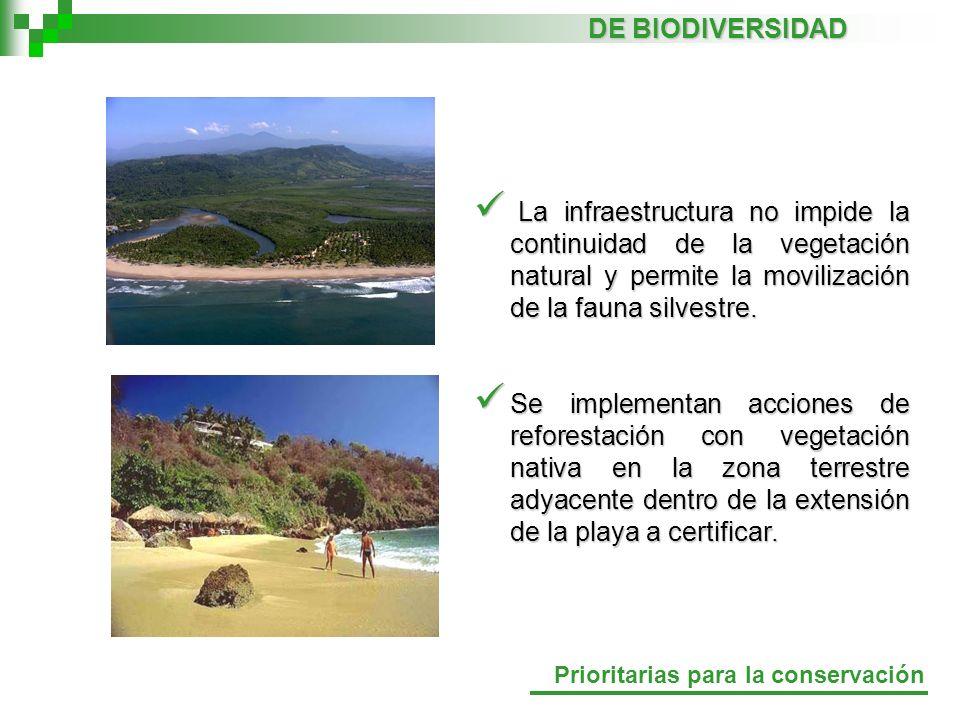 DE BIODIVERSIDAD La infraestructura no impide la continuidad de la vegetación natural y permite la movilización de la fauna silvestre.