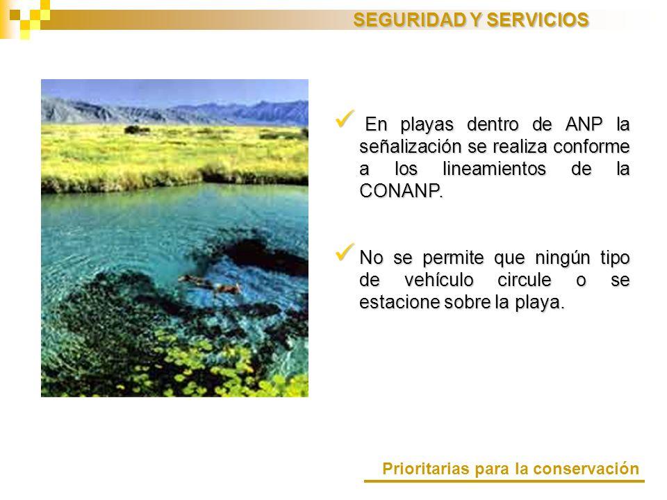 SEGURIDAD Y SERVICIOS En playas dentro de ANP la señalización se realiza conforme a los lineamientos de la CONANP.