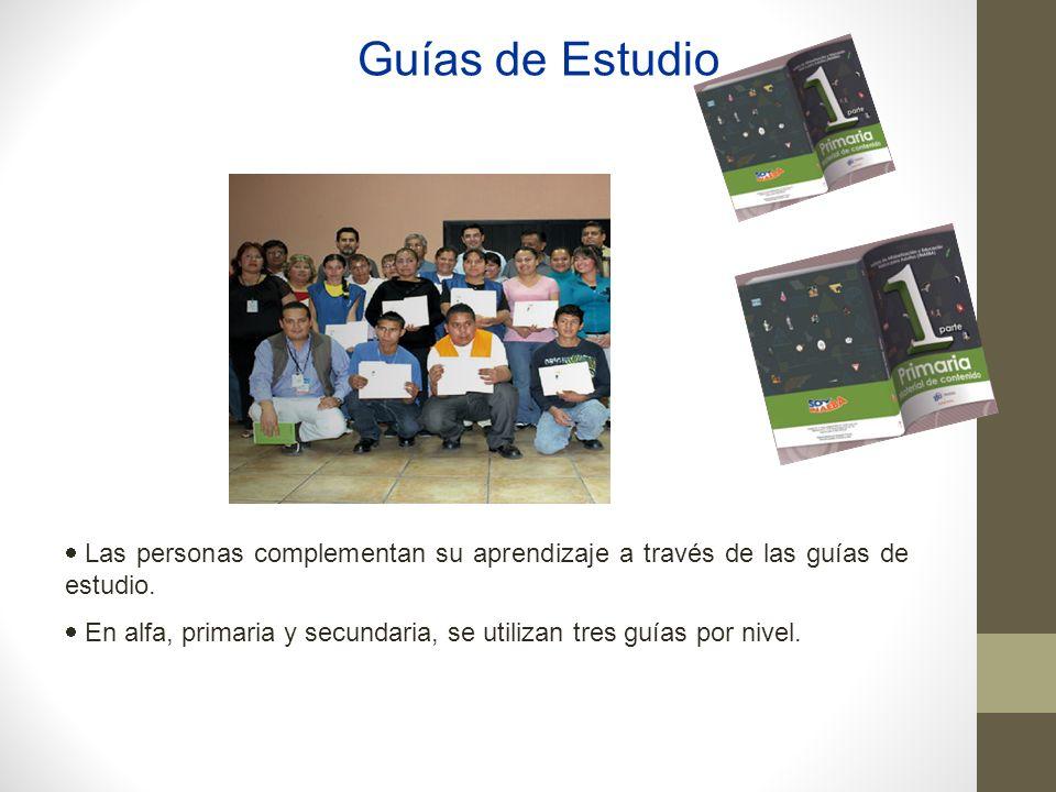 Guías de Estudio Las personas complementan su aprendizaje a través de las guías de estudio.