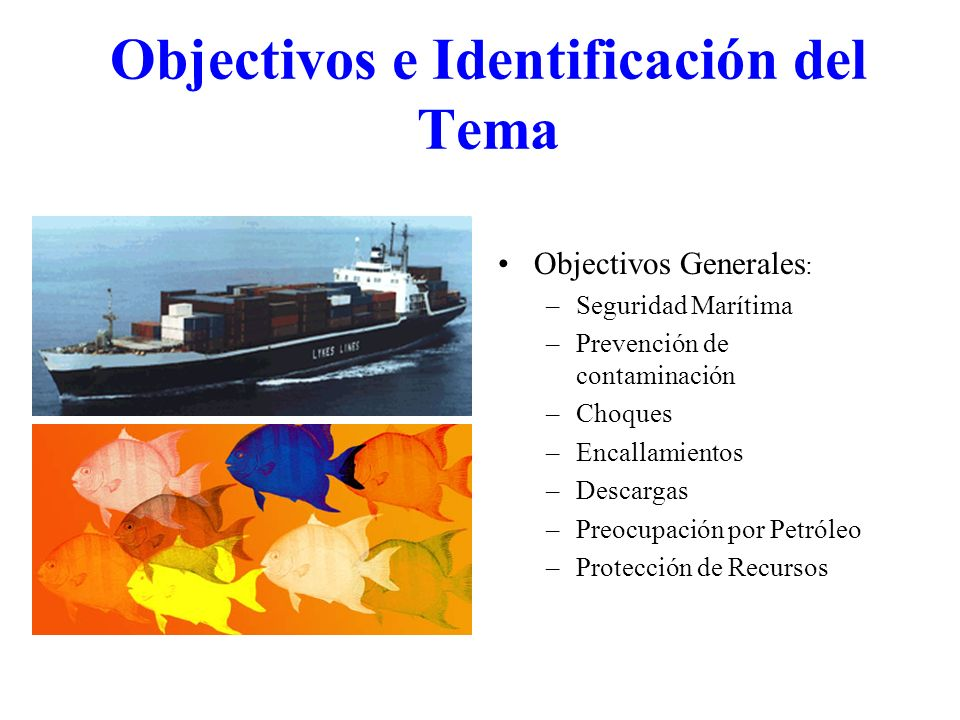 Objectivos e Identificación del Tema