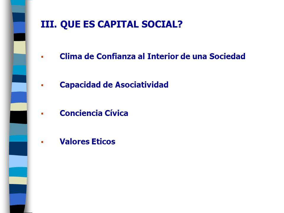 III. QUE ES CAPITAL SOCIAL