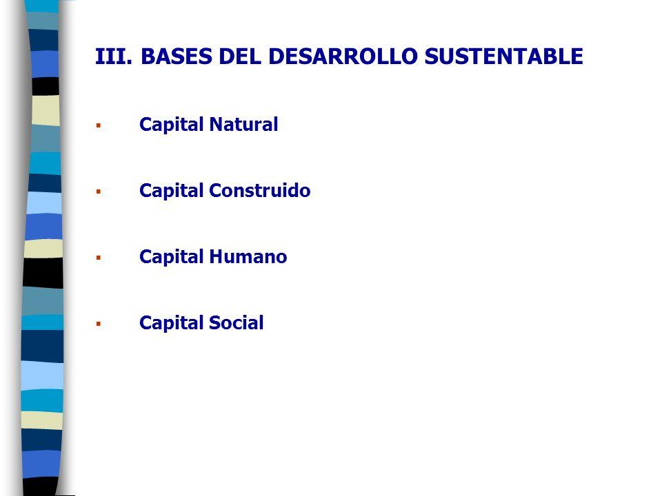 III. BASES DEL DESARROLLO SUSTENTABLE