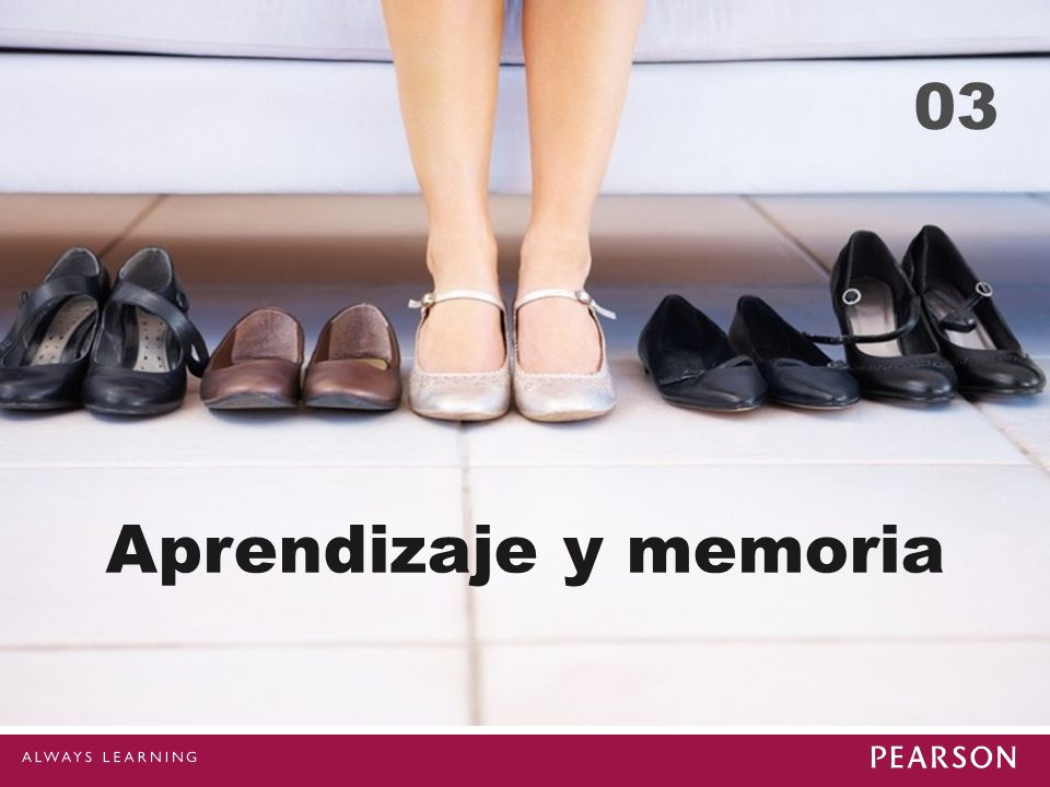 03 Aprendizaje y memoria