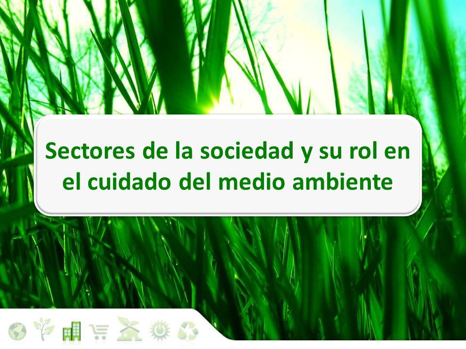 Sectores de la sociedad y su rol en el cuidado del medio ambiente