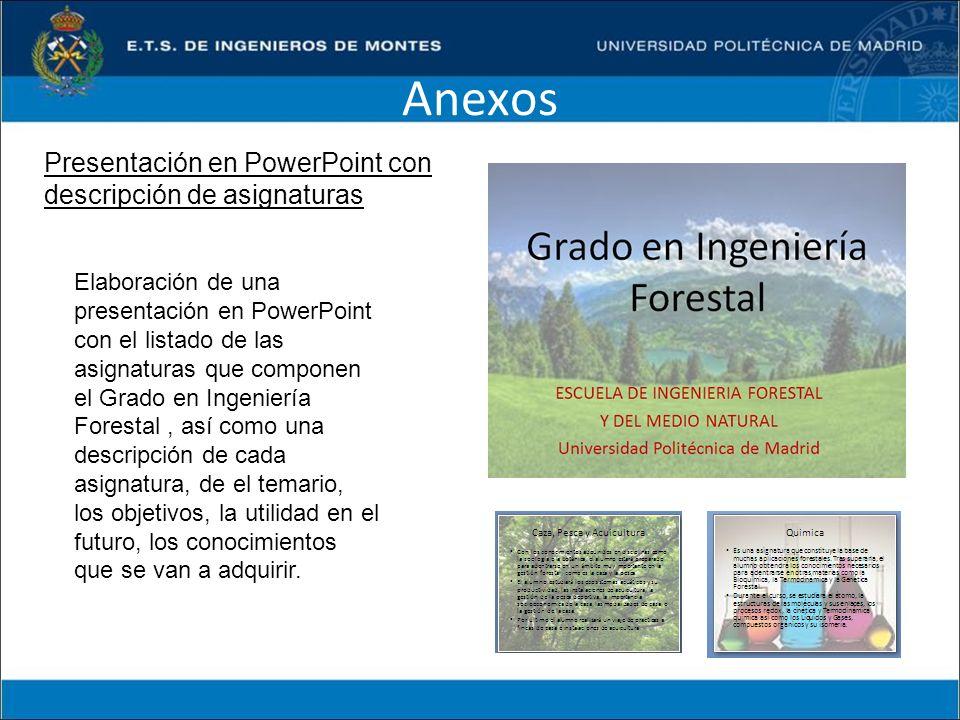 Anexos Presentación en PowerPoint con descripción de asignaturas