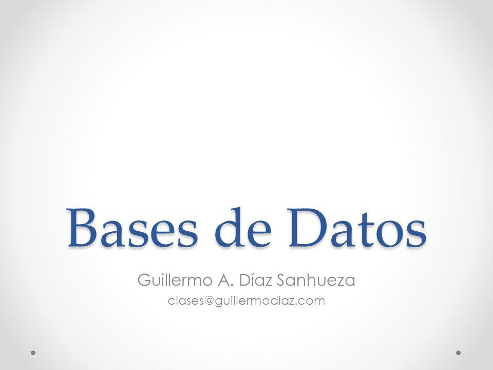 Guillermo A. Díaz Sanhueza clases@guillermodiaz.com