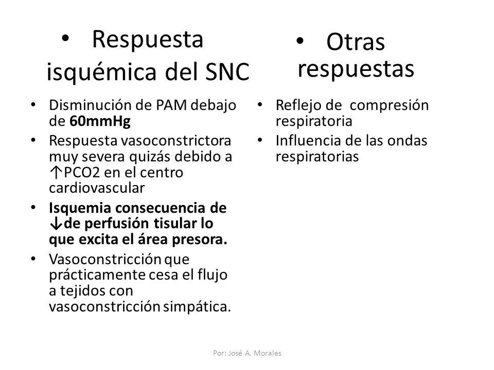 Respuesta isquémica del SNC