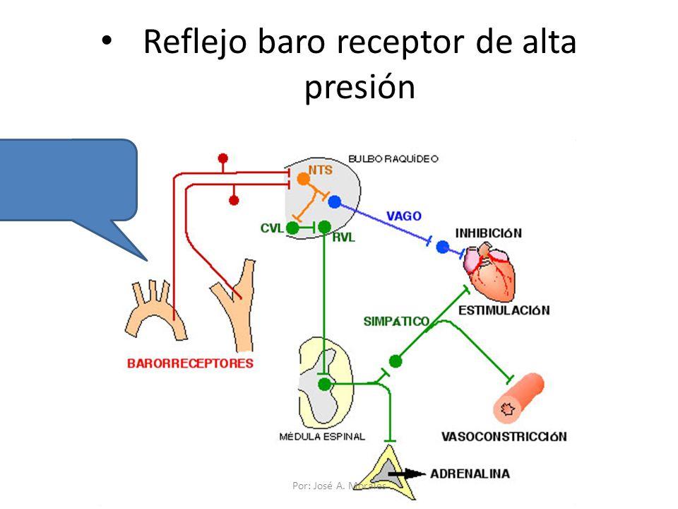 Reflejo baro receptor de alta presión