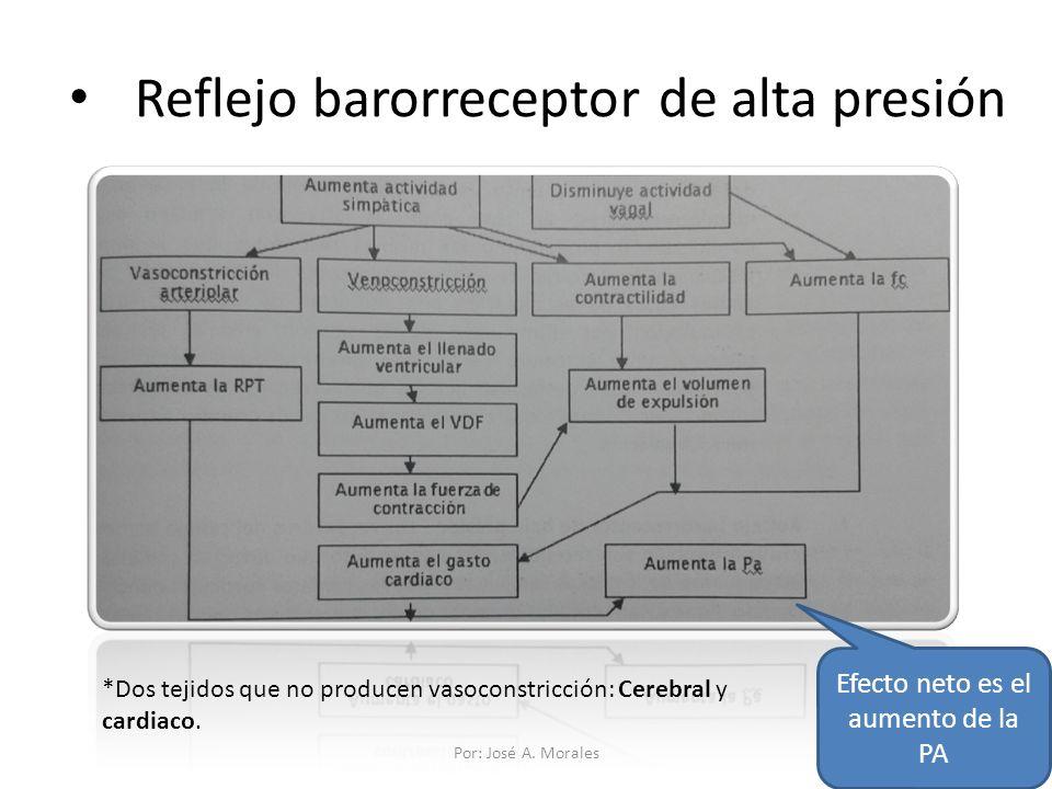 Reflejo barorreceptor de alta presión