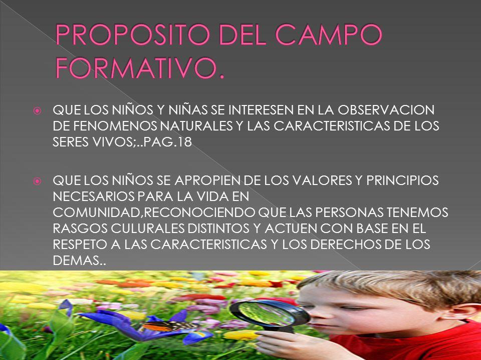 PROPOSITO DEL CAMPO FORMATIVO.