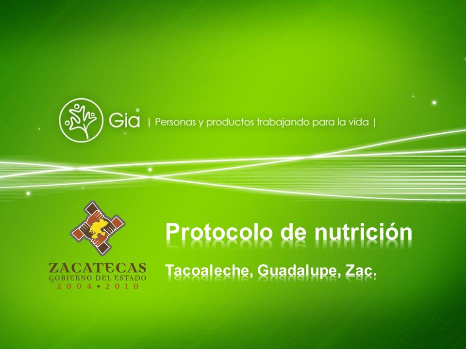 Protocolo de nutrición
