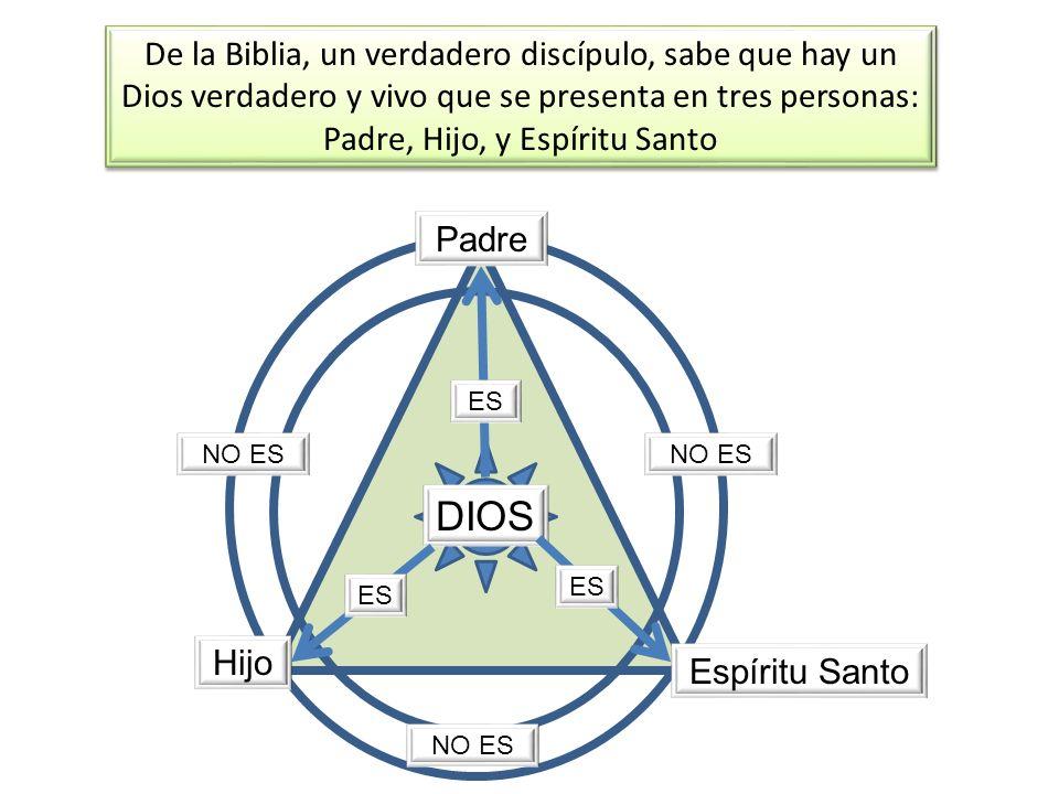 De la Biblia, un verdadero discípulo, sabe que hay un Dios verdadero y vivo que se presenta en tres personas: Padre, Hijo, y Espíritu Santo