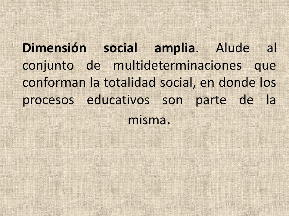 Dimensión social amplia