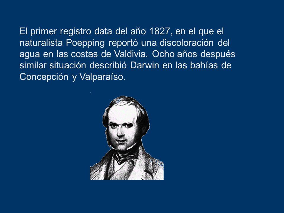 El primer registro data del año 1827, en el que el naturalista Poepping reportó una discoloración del agua en las costas de Valdivia.