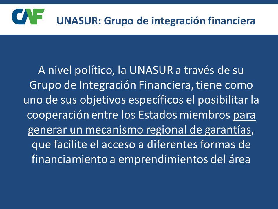 UNASUR: Grupo de integración financiera