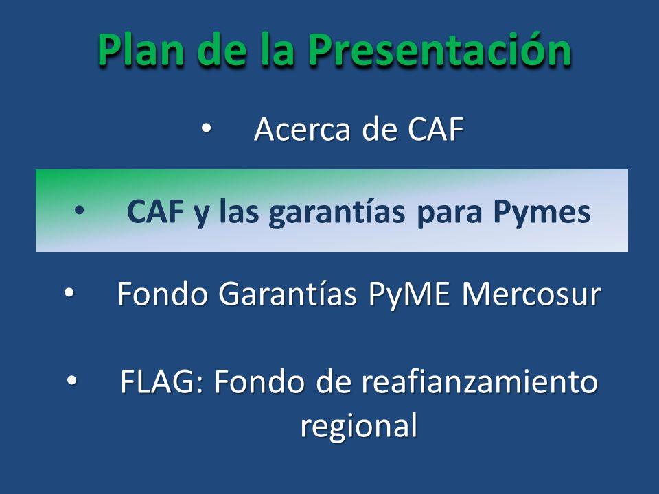 Plan de la Presentación CAF y las garantías para Pymes