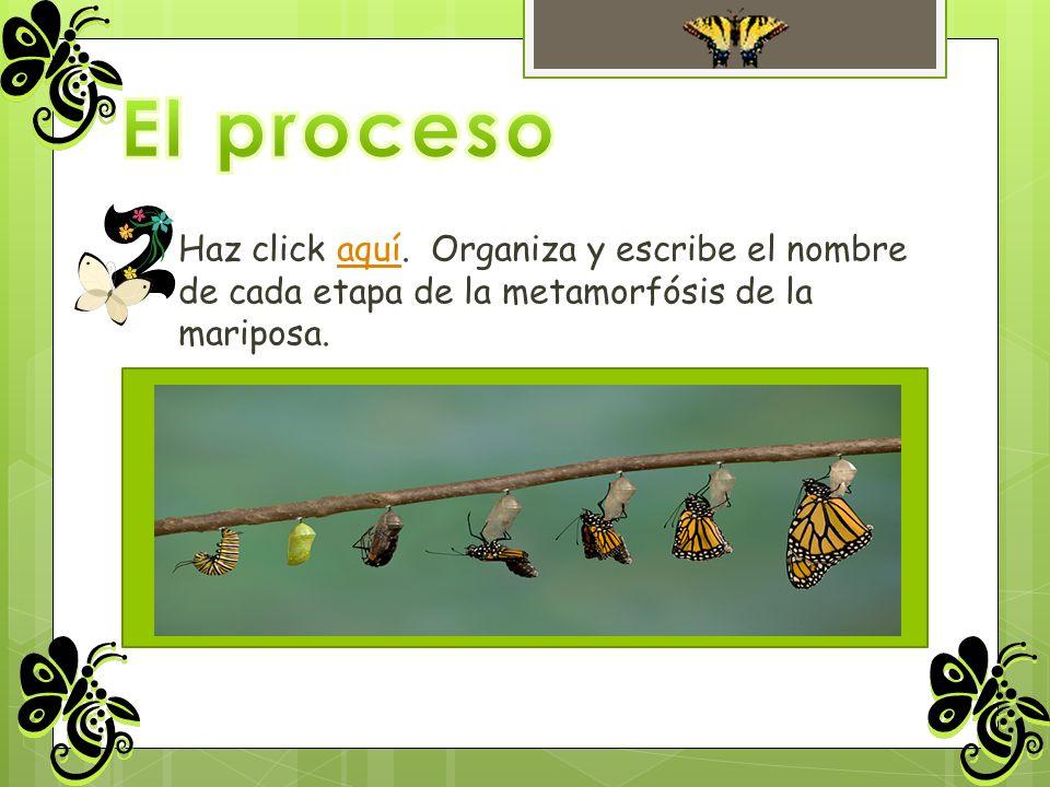 El proceso Haz click aquí.
