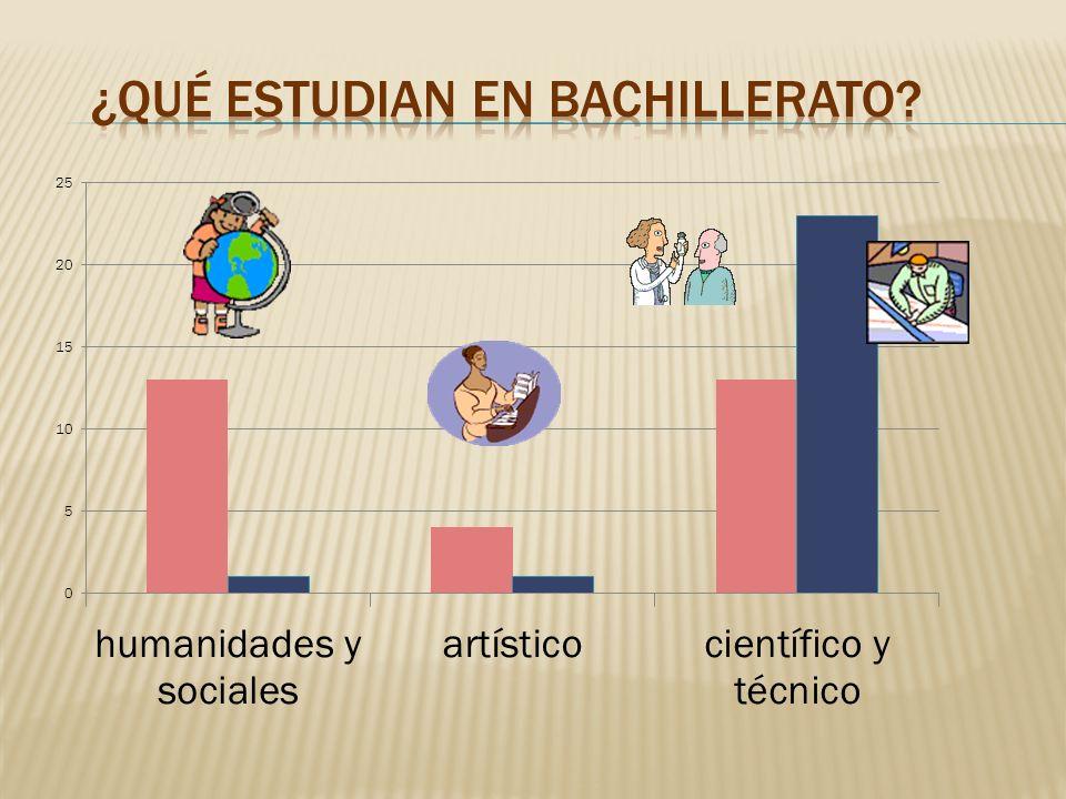 ¿Qué estudian en Bachillerato