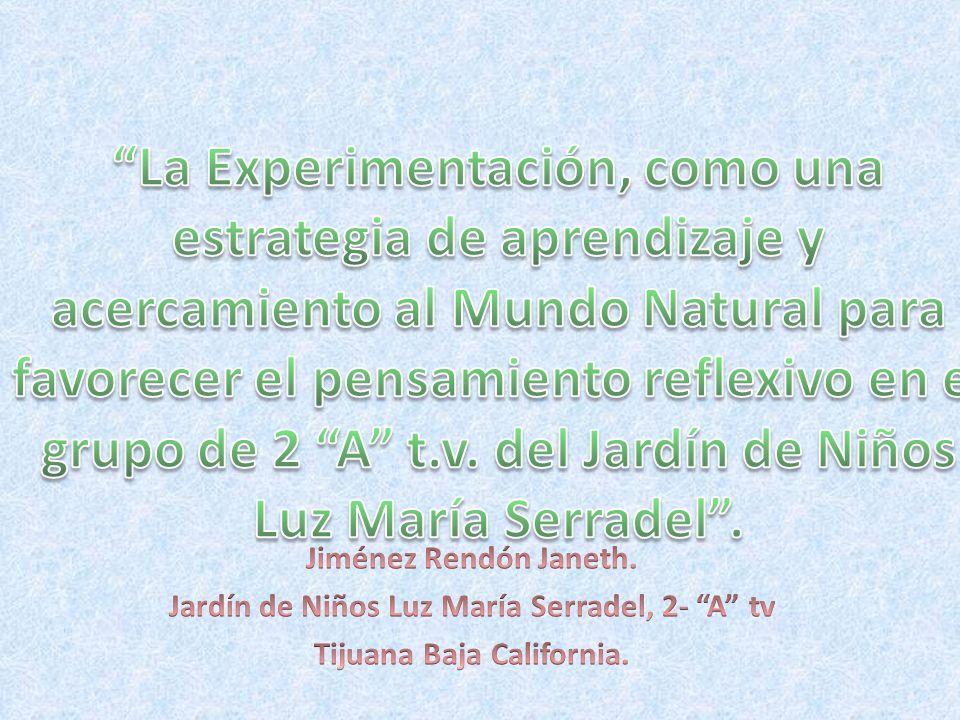 Jardín de Niños Luz María Serradel, 2- A tv Tijuana Baja California.