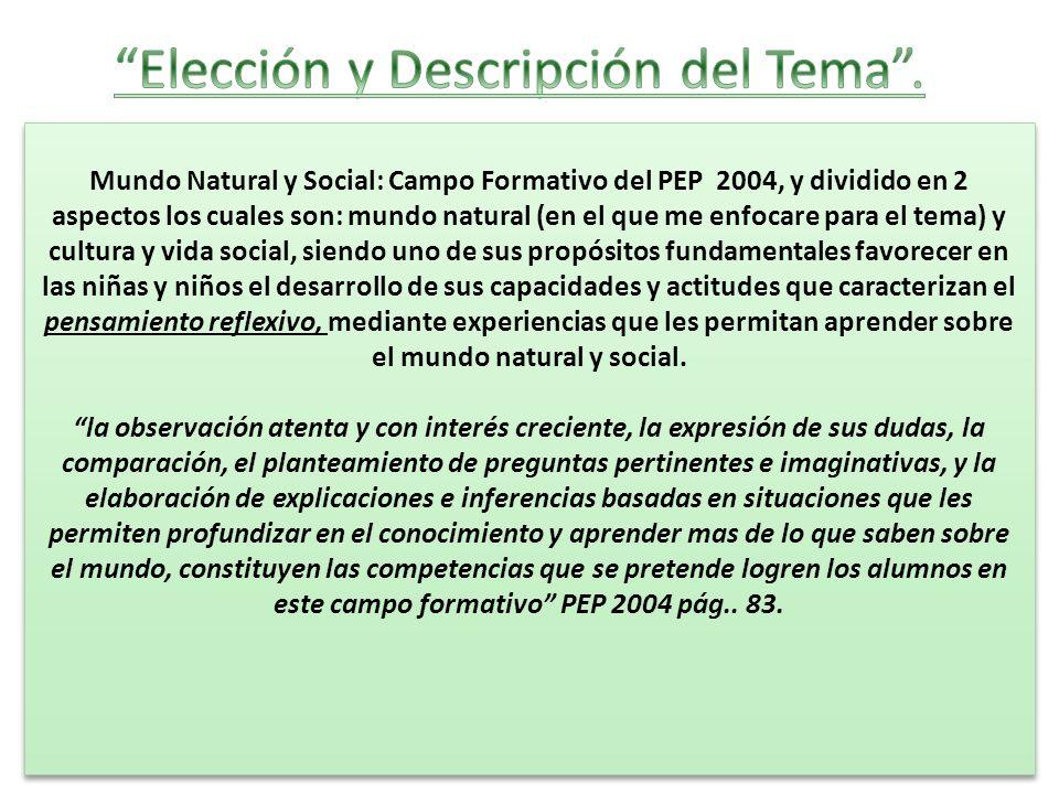 Elección y Descripción del Tema .