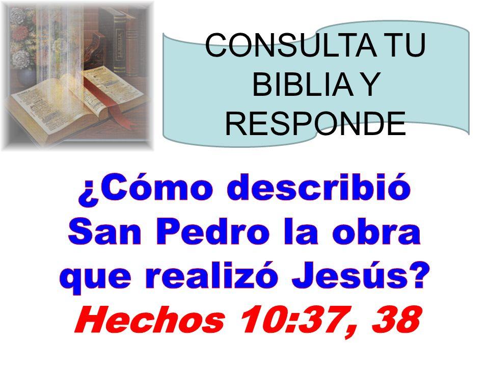 ¿Cómo describió San Pedro la obra que realizó Jesús
