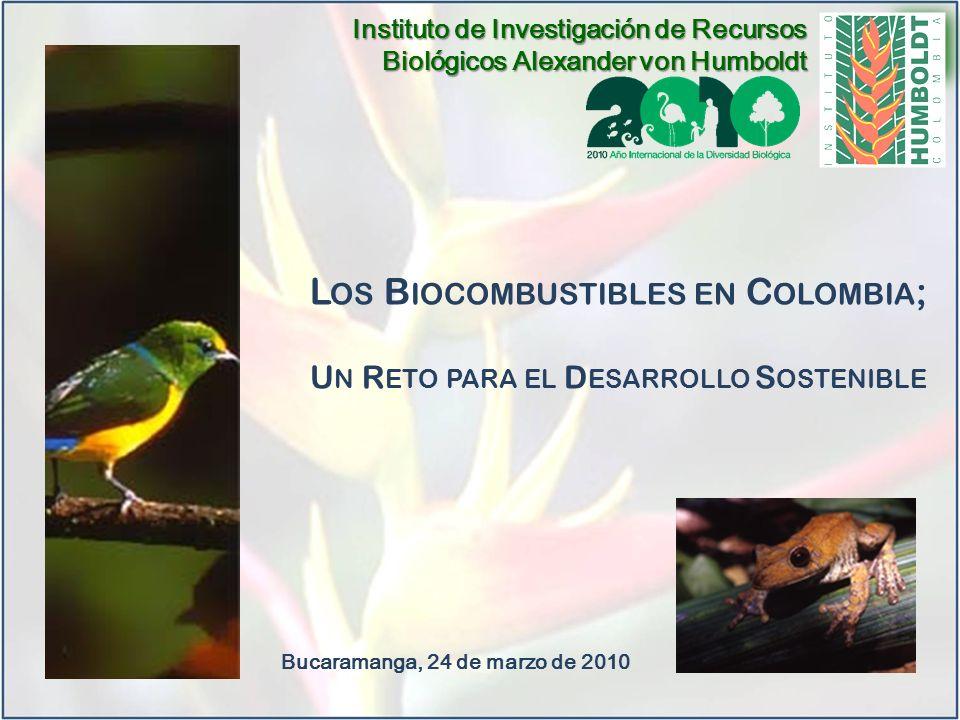 Los Biocombustibles en Colombia;