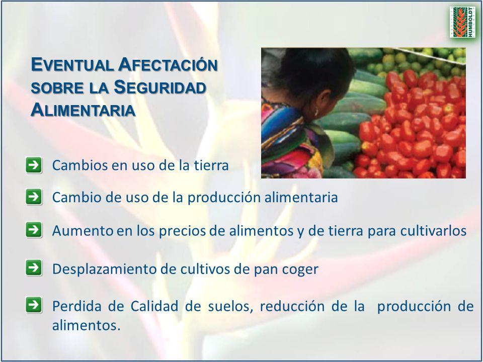 Eventual Afectación sobre la Seguridad Alimentaria