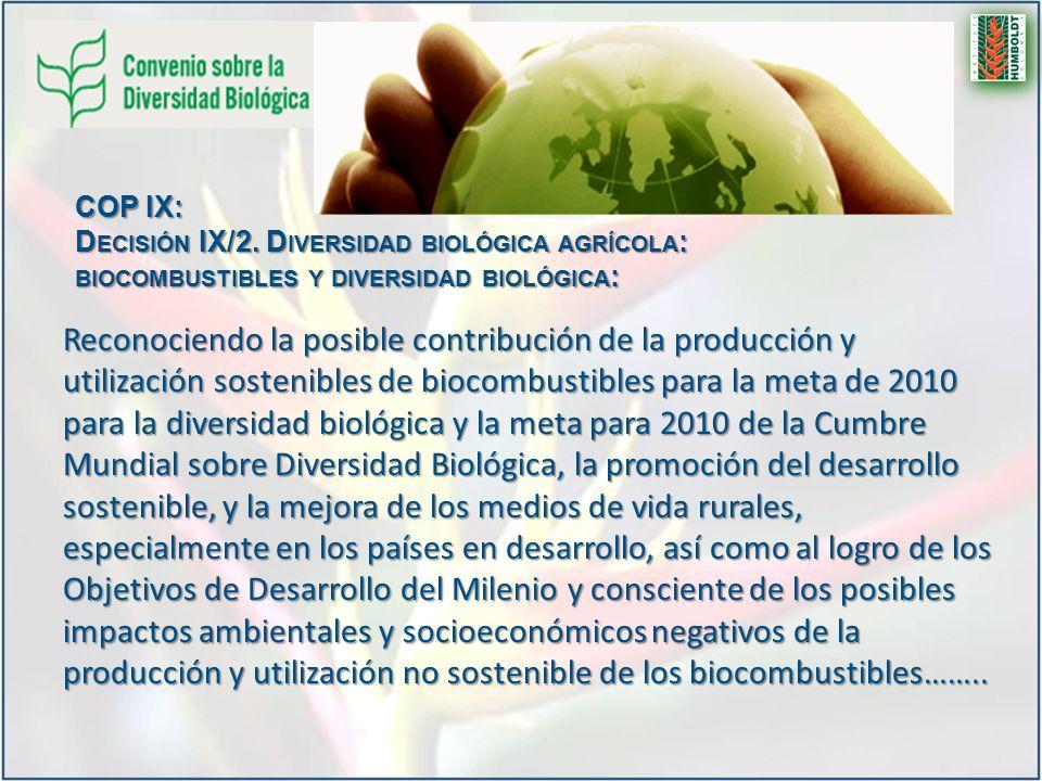 COP IX: Decisión IX/2. Diversidad biológica agrícola: biocombustibles y diversidad biológica: