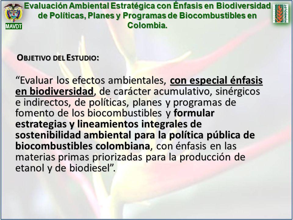 Evaluación Ambiental Estratégica con Énfasis en Biodiversidad de Políticas, Planes y Programas de Biocombustibles en Colombia.