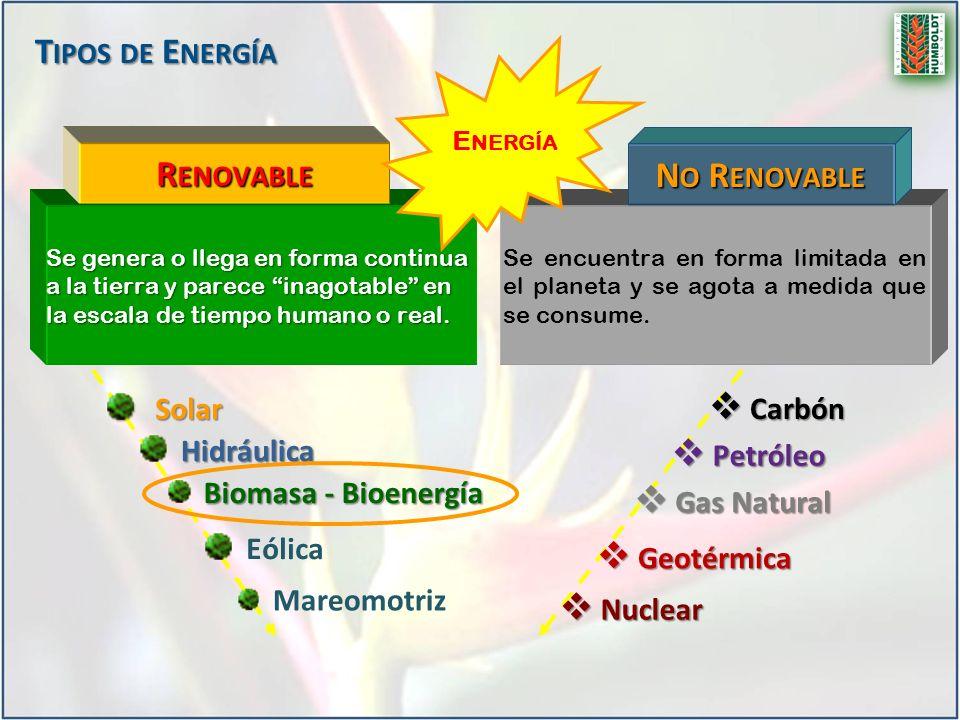 Renovable No Renovable