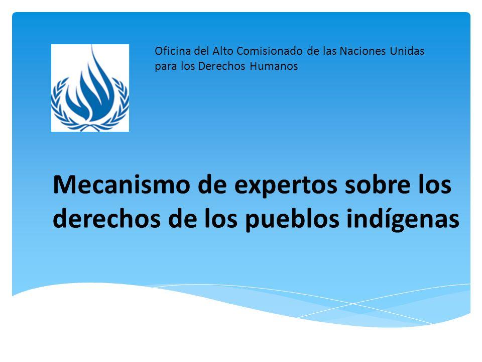 Mecanismo de expertos sobre los derechos de los pueblos indígenas