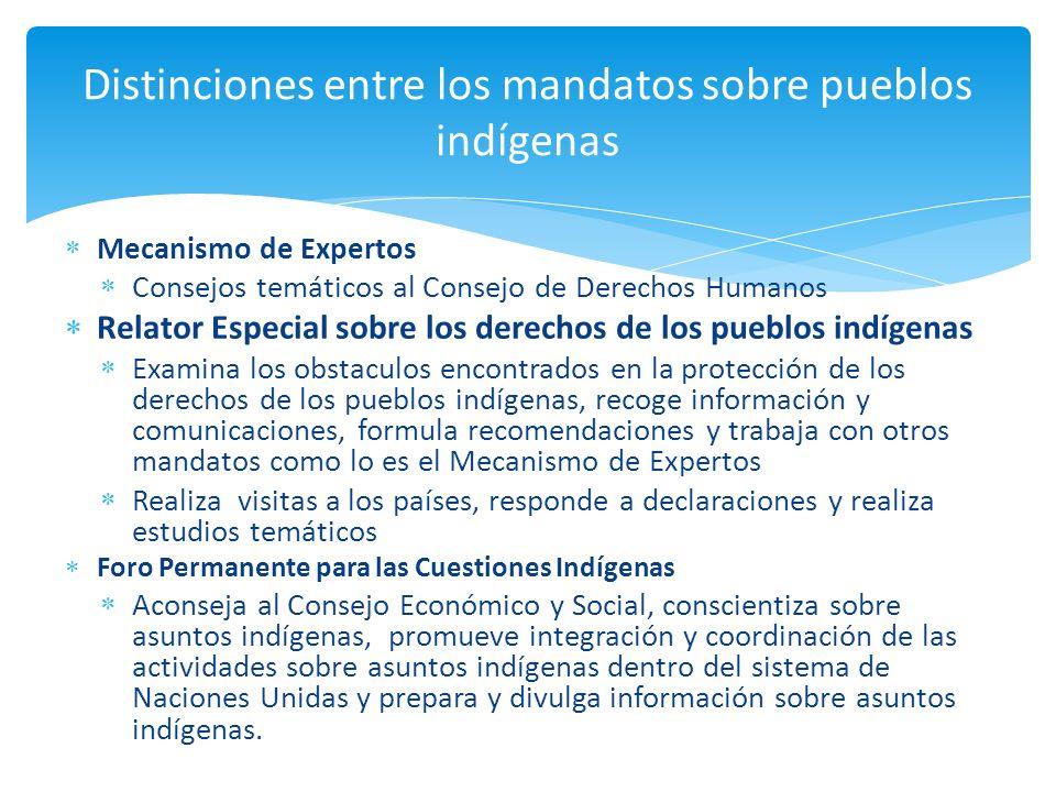 Distinciones entre los mandatos sobre pueblos indígenas