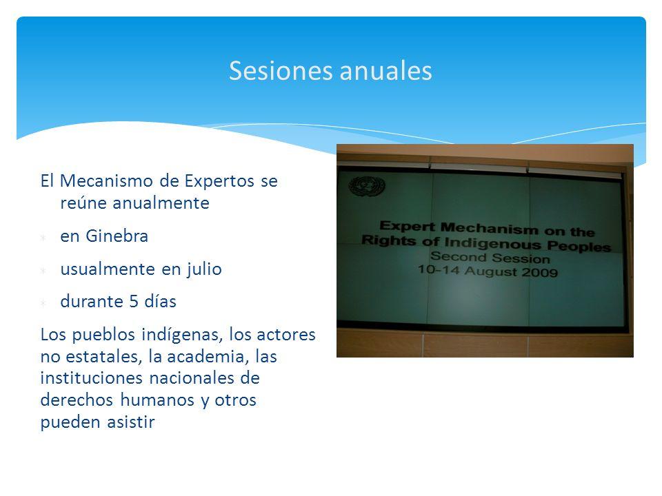 Sesiones anuales El Mecanismo de Expertos se reúne anualmente