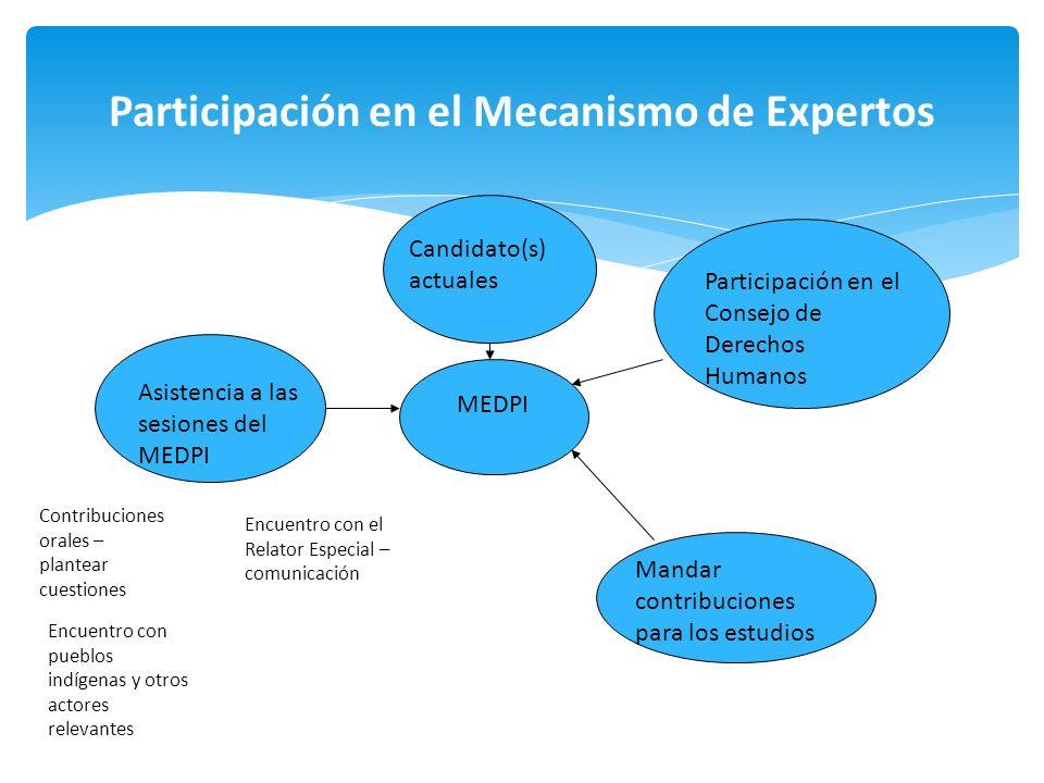Participación en el Mecanismo de Expertos