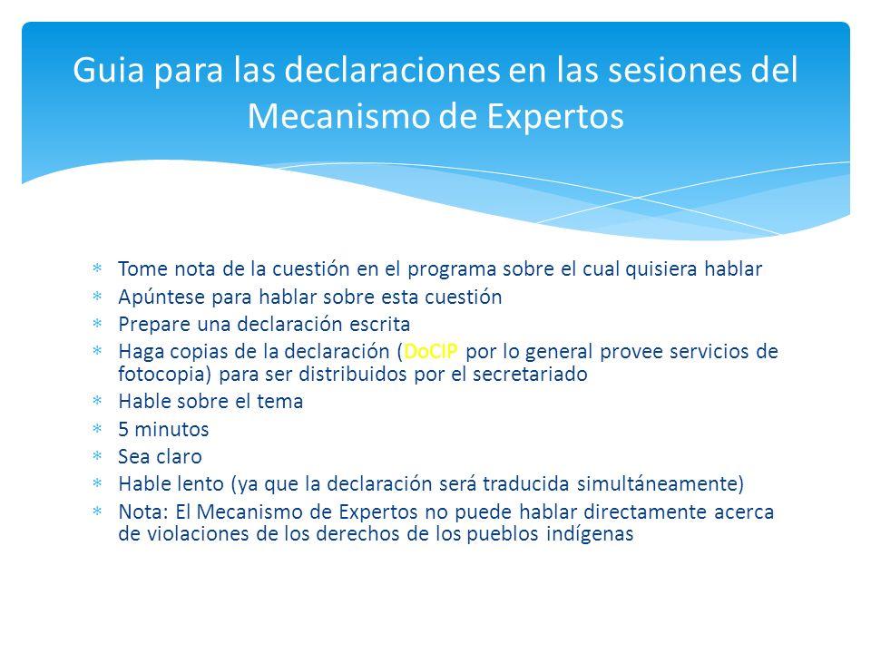 Guia para las declaraciones en las sesiones del Mecanismo de Expertos
