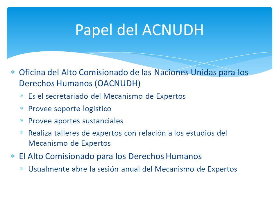 Papel del ACNUDH Oficina del Alto Comisionado de las Naciones Unidas para los Derechos Humanos (OACNUDH)