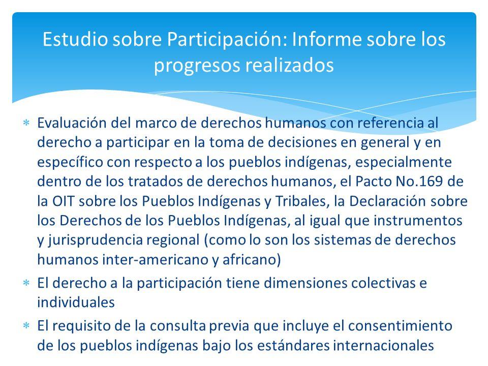 Estudio sobre Participación: Informe sobre los progresos realizados